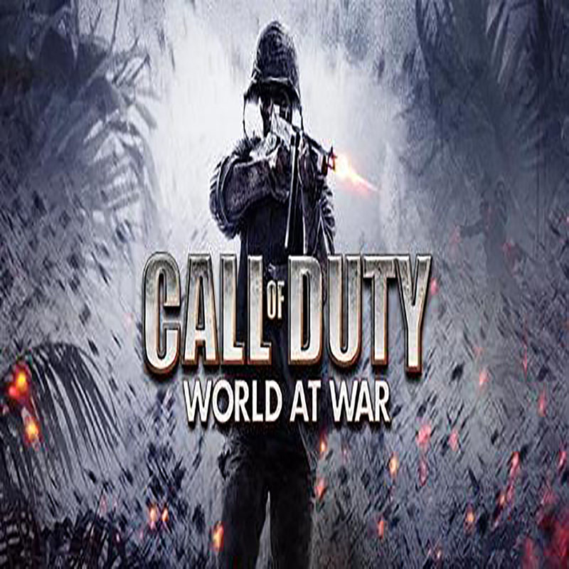 Call-of-Duty-world at war server hosting